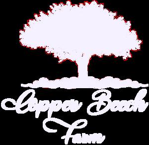 Copper Beech Farm
